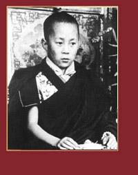 Біографія Його Святості Далай-лами XIV